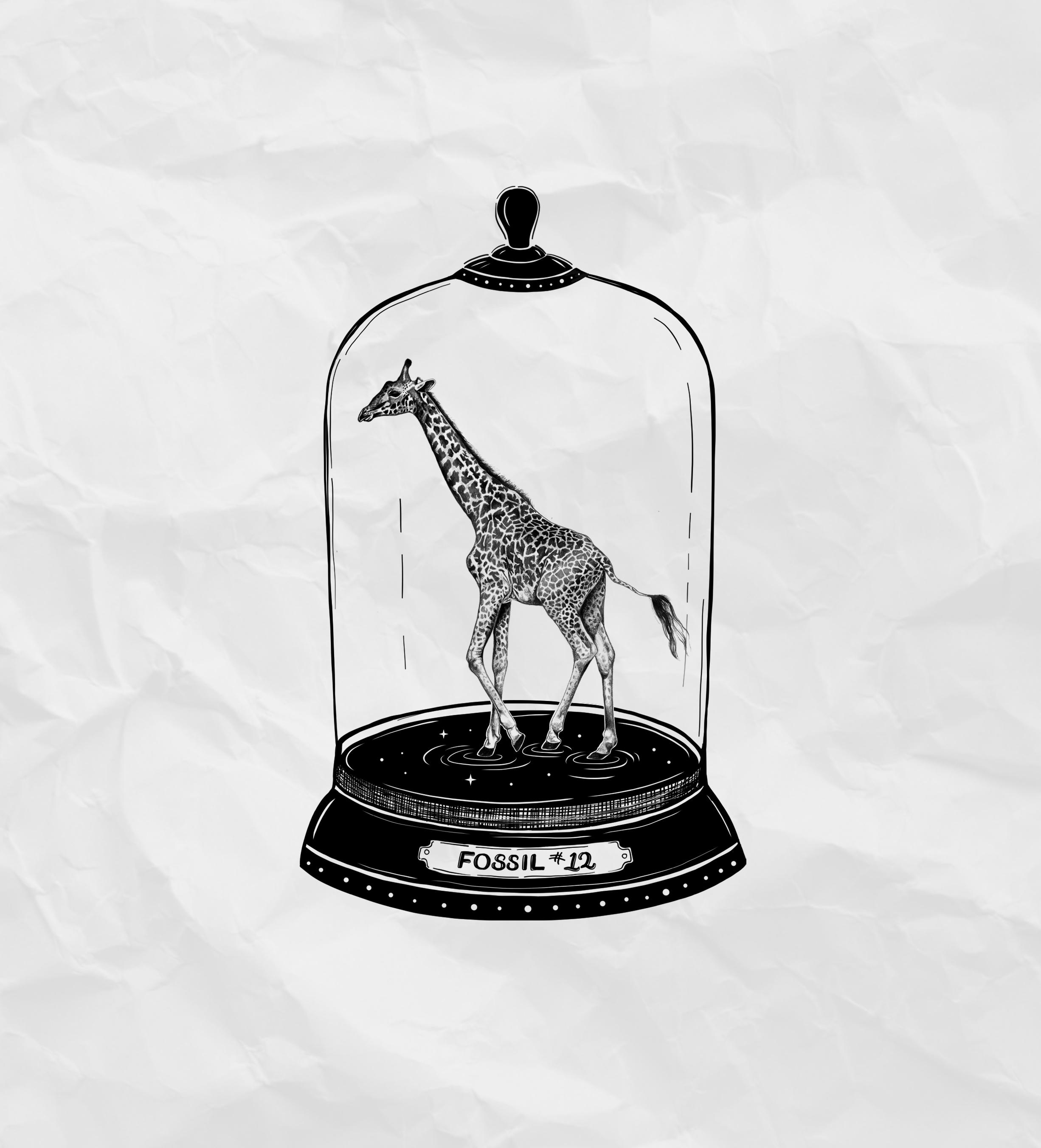 Fossil #12, The Giraffe